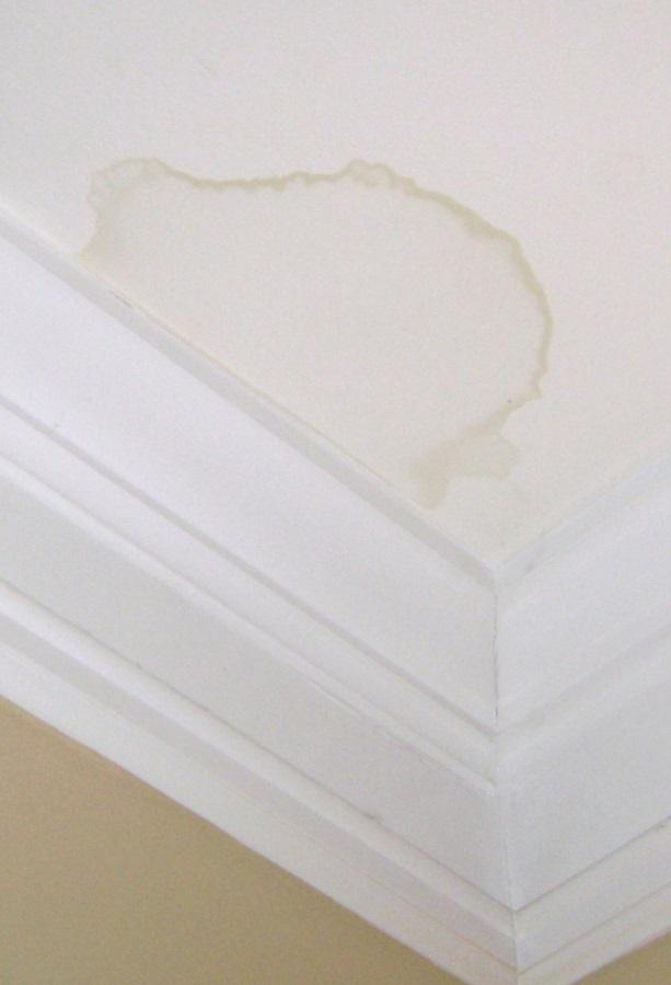 Le nettoyage des tâches qui apparaissent sur les murs et les plafonds sans abîmer la peinture est possible. Astuce qui vous montre comment enlever les tâches des murs efficacement.